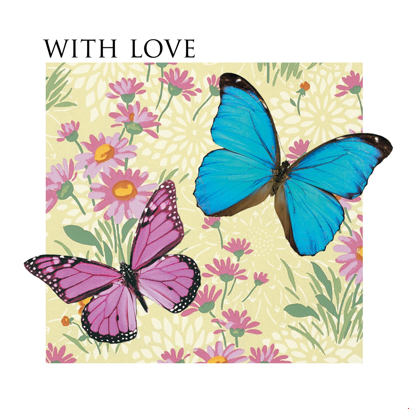 With Love Butterflies