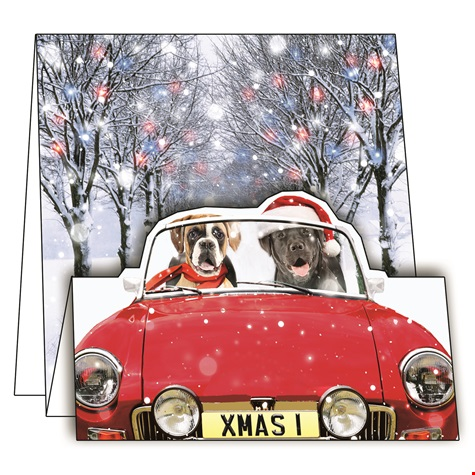 Driving Home For Christmas.Driving Home For Christmas Cards