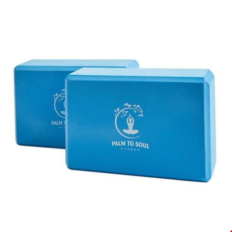 PTS_15BL_Blue Yoga Blocks.jpg
